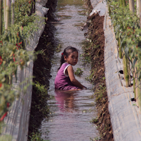 lila in the water by Ngatmow Prawierow - Babies & Children Children Candids ( farmer, petani, indonesia, children, people )