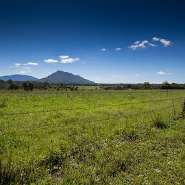 Middle Brother by Kerry Williams - Landscapes Prairies, Meadows & Fields ( farm, field, paddock, mountain, australia, middle brother, nsw, coopernook, wire fence, kwill photography )
