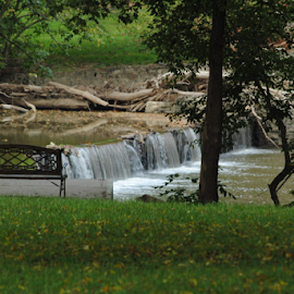 By the Riverside at Indian Mill Dam by Rhonda Yentzer-Rose - City,  Street & Park  Historic Districts ( water, bench, park, dam, trees )