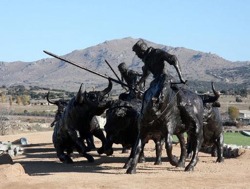 Rodeo Bull Fight