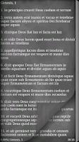 Screenshot of Latin Vulgate