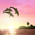 Dolphin Sun icon