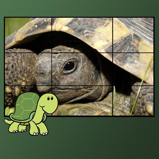 休闲の子供のためのカメのパズル LOGO-記事Game
