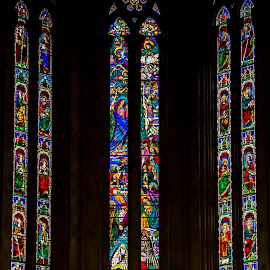 The Glass Of Pease by Rooney Tham - Buildings & Architecture Architectural Detail ( history, glass art, tuscany, arts, church, cathedral )