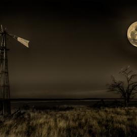 Moon Lit Abandoned Homestead by Bob Juarez - Pixel Fusion Imagery - Landscapes Prairies, Meadows & Fields ( tree, prairie, windmill, abandoned, moonrise )