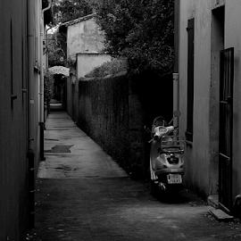 Lost by Tatiana Verčimáková - City,  Street & Park  Street Scenes ( bike, black and white, street )