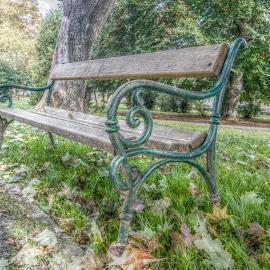 Park bench by Štefan Brajković - City,  Street & Park  City Parks ( croatia, bjelovar-bilogora county, bjelovar )