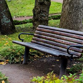 Quartet by Lasbi Naboj - City,  Street & Park  City Parks ( bench, park, quartet, city )