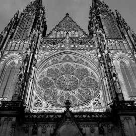 Praha Cathedral by Brennan Cassidy - Buildings & Architecture Places of Worship ( church, black and white, cathedral, light, prague )