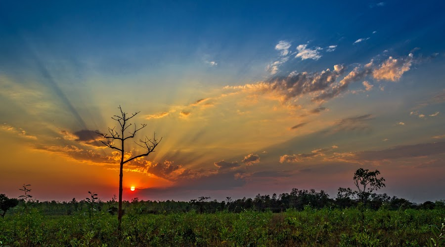 Dream World by Rahul Chakraborty - Landscapes Sunsets & Sunrises