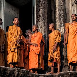 Monks by Steve Badger - People Portraits of Men ( orange, monks, angkor wat, buddism, cambodia,  )