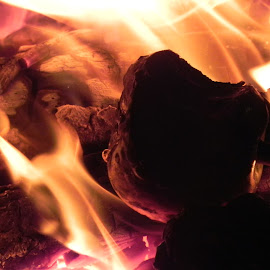 Roasting apple by Kathryn Nagelberg - Abstract Fire & Fireworks ( apple, fire pit )