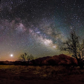 by Ed Mullins - Landscapes Starscapes
