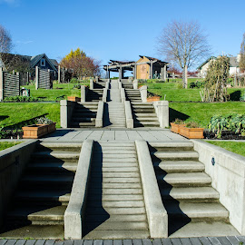 Community Garden Stairs by Cory Bohnenkamp - City,  Street & Park  Vistas ( stairs, vista, community, garden, city )