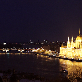 Parliament by Hoang Nguyen Anh - Buildings & Architecture Public & Historical ( hungary, parliament, budapest, night building, budapest parliament, night city )