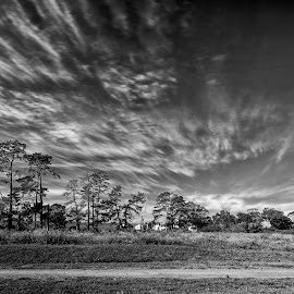 by Randall Langenhoven - Landscapes Cloud Formations ( sky, black and white, tree line, cloudscape, long exposure, landscape )