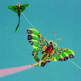 Flying Kites by Alec Halstead - Artistic Objects Other Objects