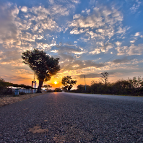 Sunset on the road by Md Mukibul Islam - Landscapes Sunsets & Sunrises ( sky, sunset, trees, journey, road, landscape, roadtrip )