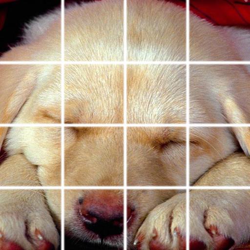 狗狗拼圖 休閒 App LOGO-APP試玩