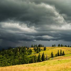 Bucovina by Ionel Lupu - Landscapes Cloud Formations ( bucovina )