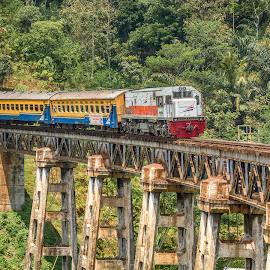 Serayu Pagi Train in Garut West Java Indonesia by Nuno Obey - Transportation Trains