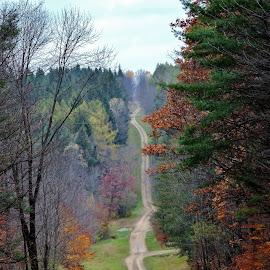 by Karen Jaffer - Transportation Roads
