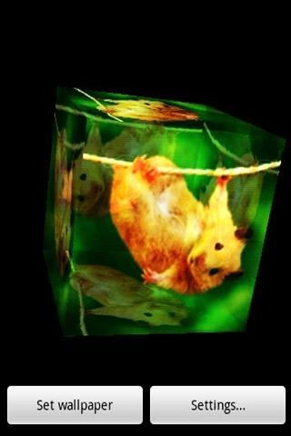 3D可愛的倉鼠