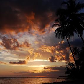 Atardecer caribeño by Lidia Noemi - Landscapes Sunsets & Sunrises ( cielo, playa, mar, atardecer, caribe, palmeras,  )