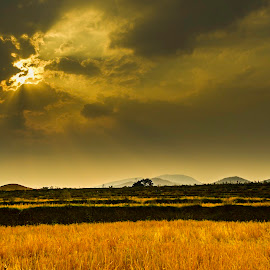 Sun-rays over the fields and mountains by Sai Hanone - Landscapes Mountains & Hills ( #sunrays #shan #myanmar #hills #landscape )