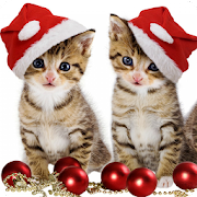Pet Christmas Wallpaper HD