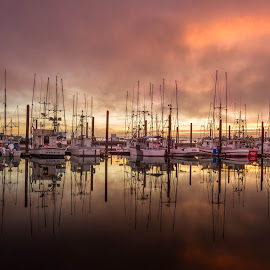 Fishing Fleet by Christian Flores-Muñoz - Transportation Boats ( reflection, fishing boats, sunset, oregon coast, newport oregon, fishing fleet )