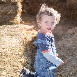 in.the.straw by Clare Parsons - Babies & Children Toddlers ( autumn, hay, fall, bales, toddler, maze, clareparsonsphoto )