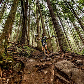 Squamish 50 miler by Tyrell Heaton - Sports & Fitness Running ( sports, forest, running, people, squamish 50 miler )