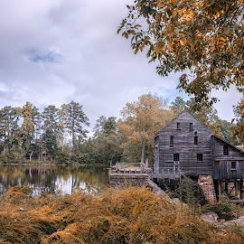Yates Mill by Heather Allen - Landscapes Forests ( mill, lakeshore, yates mill, waterwheel, fall, trees, long exposure, lake, landscape, north carolina,  )