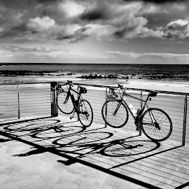 At the beach. by Esther Van De Belt - Transportation Bicycles ( fence, pushbike, bike, bycicle, shadow, beach, gate,  )