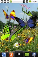Screenshot of Butterfly animated color LWP!