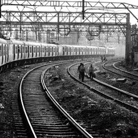 LIFELINE OF MUMBAI-LOCAL TRAINS by Sagar Sawant - Transportation Trains (  )