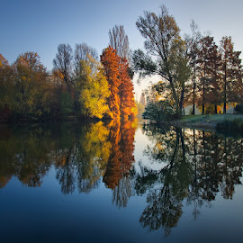 Sunrise Overture pt.II. by Zsolt Zsigmond - Landscapes Waterscapes ( reflection, waterscape, autumn, fall, trees, sunrise, morning, light,  )