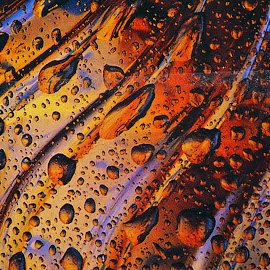 Abstraction by Mike O'Connor - Abstract Water Drops & Splashes ( water, colour, drops, light, curves )