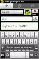 Screenshot of NetSMS