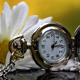 Good Morning by Dipali S - Artistic Objects Technology Objects ( luxury, isolated, single object, clock, watch, elegance, instrument of time, jewelry, equipment, close-up )