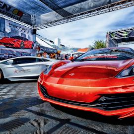 The McLaren by Ferdinand Ludo - Transportation Automobiles ( mclaren, sema 2013 show, lamborghini )