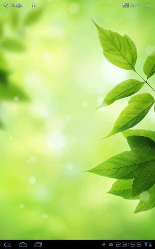 Leaves - Bokeh Live Wallpaper