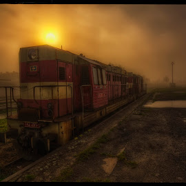 Kocór by Petr Klingr - Transportation Trains ( railway, hdr, fog, station, morning )