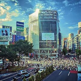 The legendary Shibuya crossing by Darlis Herumurti - City,  Street & Park  Street Scenes ( people, crowd, humanity, society )