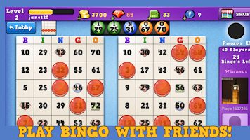Screenshot of Bingo Summer Splash