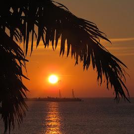 Sunrise by Yordanka Trifonova - Landscapes Sunsets & Sunrises