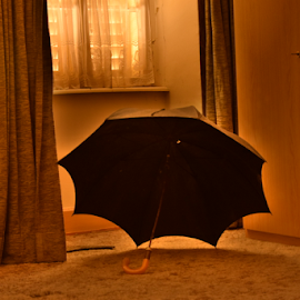 The umbrella by Laurent Jacquemyns - Artistic Objects Clothing & Accessories ( hdr, halo, umbrella, house, bedroom )
