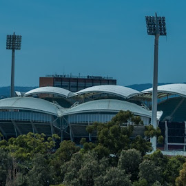 adelaide oval by Sean Heatley - Sports & Fitness Australian rules football ( lights, south australia, river torrens, church, fooball, cricket, stadium, australia, adelaide, sport, trees, city )