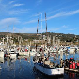 Going fishing by Karin Bennett - Landscapes Travel ( boats, half moon bay, travel, fishing )